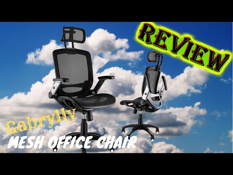 Mesh Chair (Office and Gaming) by Gabrylly - Worth a buy? | REVIEW
